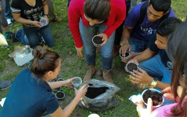 Estadounidense busca apoyar a la ecología mexicana