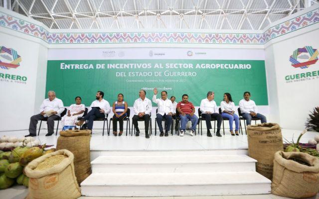 'Que la violencia y los violentos no nos metan miedo': Héctor Astudillo