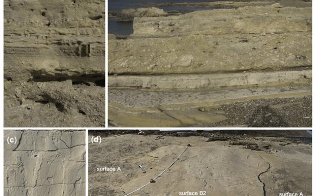 Huellas encontradas en Grecia desafían teoría evolutiva humana - Foto de Proceedings of the Geologists' Association