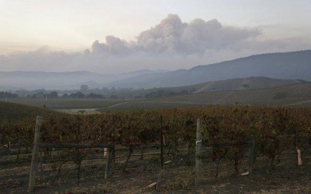 Declaran emergencia en California por incendios forestales. Van 17 muertos - Foto de AP/Eric Risberg