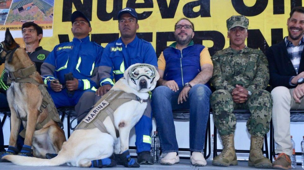 """Inician construcción de clínica veterinaria gratuita """"Frida"""" en Coyoacán - Foto de @mauriciotoledog"""