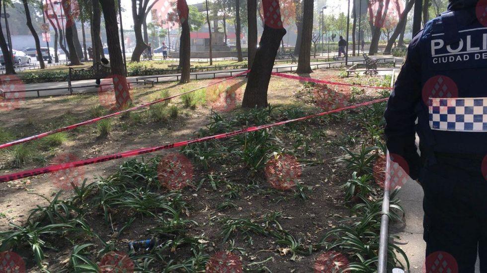 Abandonan feto en parque de la Doctores - Foto de Red Vial