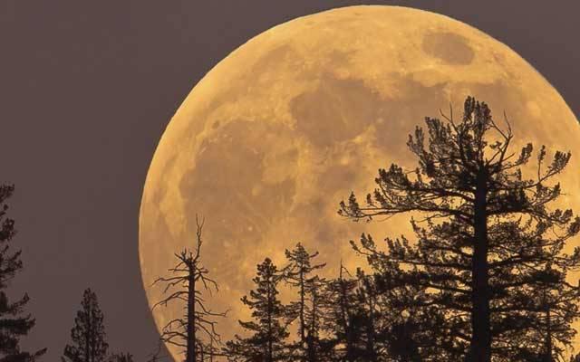 Se acerca la única Súper Luna del año