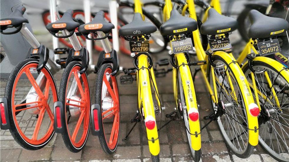 Servicios de bicicletas no operarán sin regulación: Tanya Müller - edf