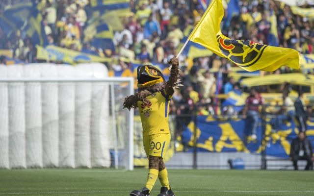 #VIDEO Mascota del América pide matrimonio en el Estadio Azteca - Foto: Mexsport.