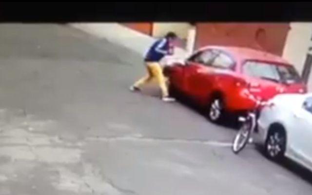#VIDEO Asaltan y roban autopartes en la Del Valle - Foto: @gvolpi77.