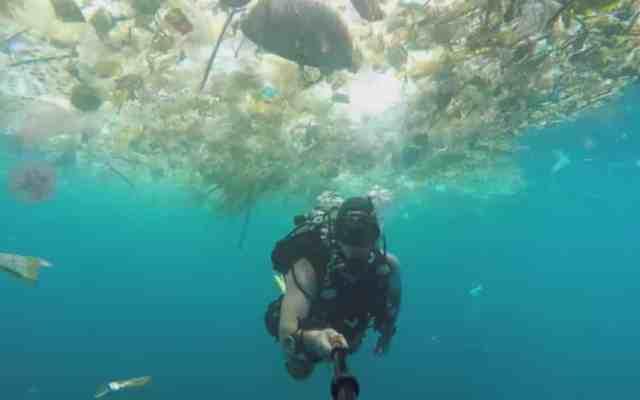 #Video Así es nadar entre un mar lleno de plástico - Foto: Youtube.