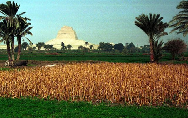 Egipto prohibe cultivos por falta de agua - Foto de Internet