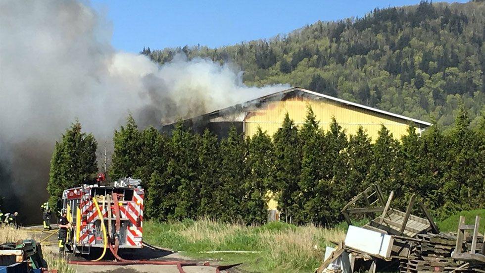 Jornaleros mexicanos sobreviven a incendio en granja en Canadá - Foto de CBC