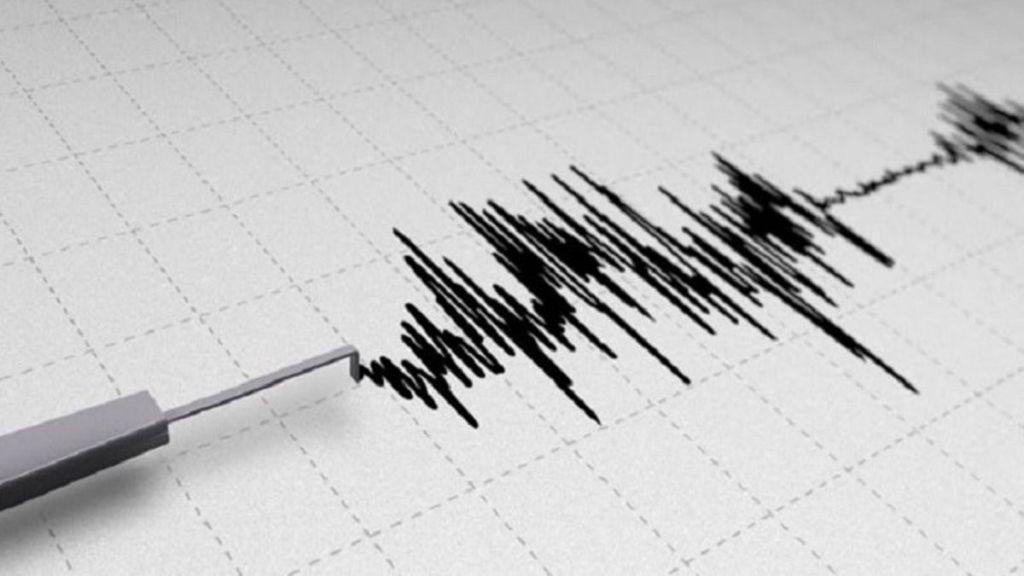 Se registra sismo de magnitud 4.2 en Guerrero. Noticias en tiempo real