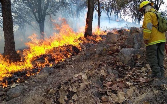 Suspenden clases en cuatro municipios de Jalisco por incendio forestal - Foto de @SkyAlertStorm