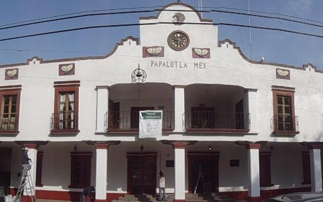 Municipio mexiquense sancionará a quien alimente a perros callejeros - Foto de internet