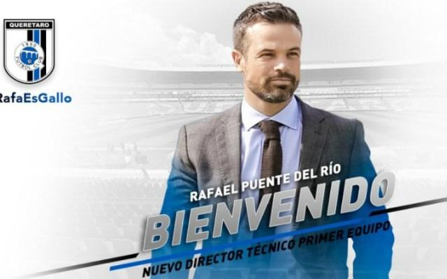 Rafael Puente del Río, nuevo entrenador de Gallos Blancos - Foto de @Club_Querétaro