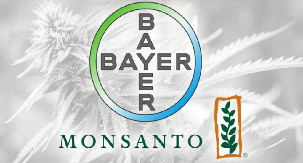 """Bayer desaparecerá la marca """"Monsanto"""" tras su compra - Foto de internet"""