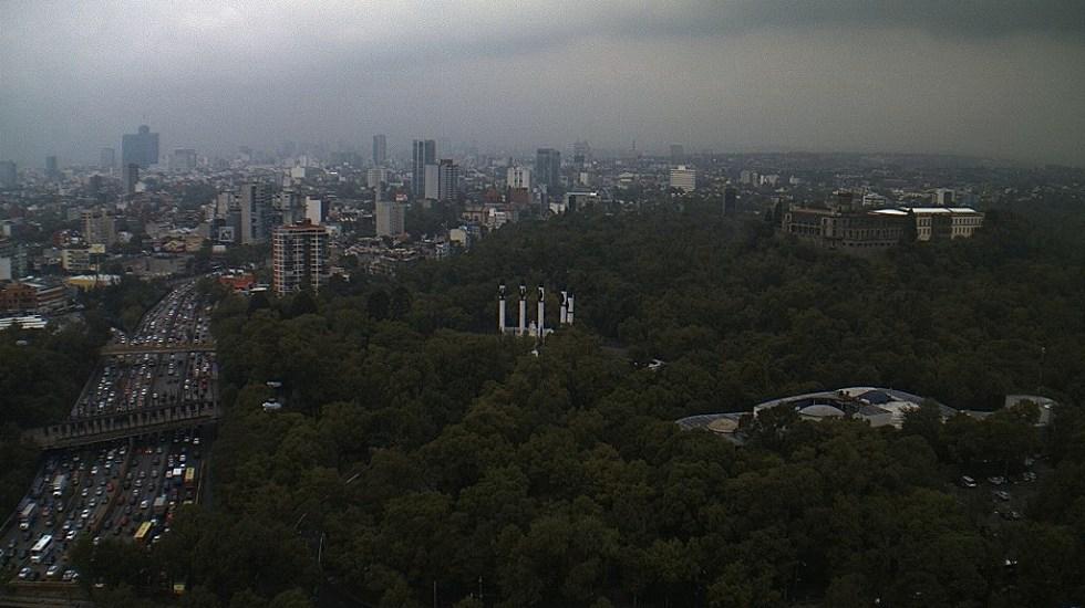 Lluvia provoca encharcamientos y caída de rama en la capital - Foto de @webcamsdemexico