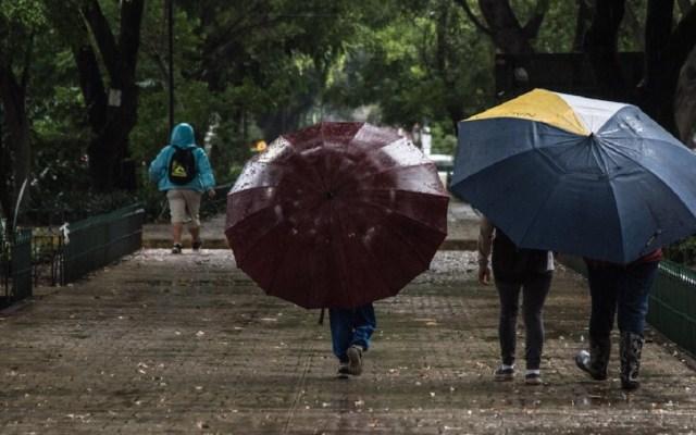 Lluvia de ligera a moderada en siete delegaciones - Foto de internet