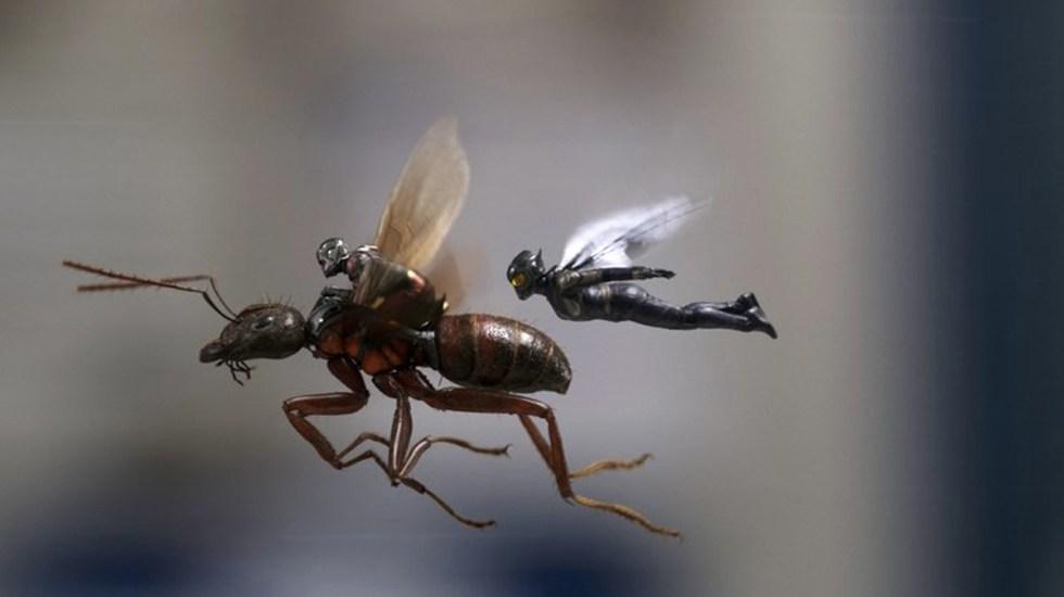 Ant-man y la Avispa dominan la taquilla de fin de semana
