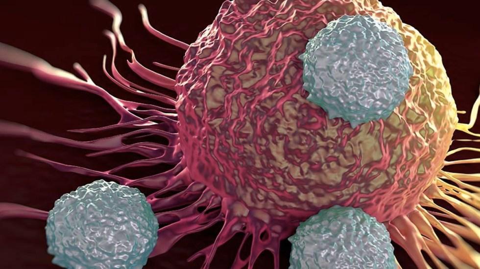Mueren cuatro personas al contagiarse de cáncer por trasplantes - Foto de Interent