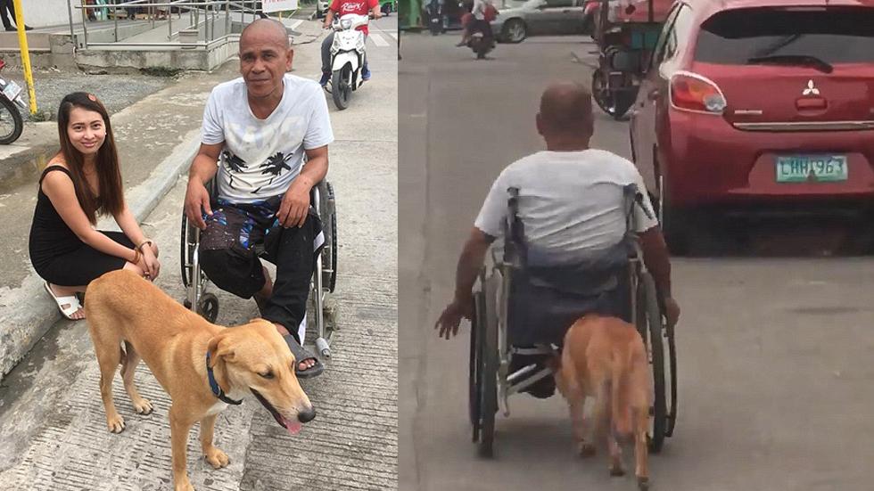 #Viral Perro ayuda a su dueño a empujar su silla de ruedas - Foto de Facebook