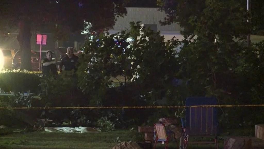 Mueren dos personas aplastadas por rama de árbol en Illinois - Foto de Internet