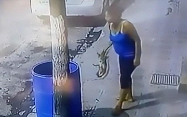 #Video Mujer tira a perro en tambo porque la perseguía - Foto Captura de Pantalla