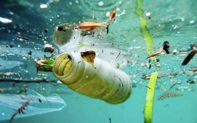 Prohibir uso de plásticos no es una solución real para el cuidado del ambiente - Plásticos en el mar. Foto de internet