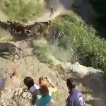 #Video Toro arremete contra asistentes al 'Pilon Bull Run'