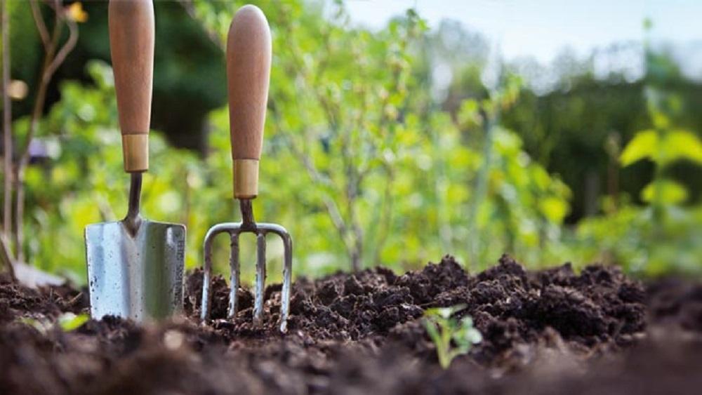 Expertos piden implementar una agricultura sostenible. Foto de Internet