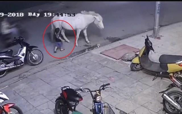#Video Caballo patea a niño pequeño que jugaba sin supervisión - Caballo da patada a niño que quería tocarlo, en Vietnam. Captura de pantalla