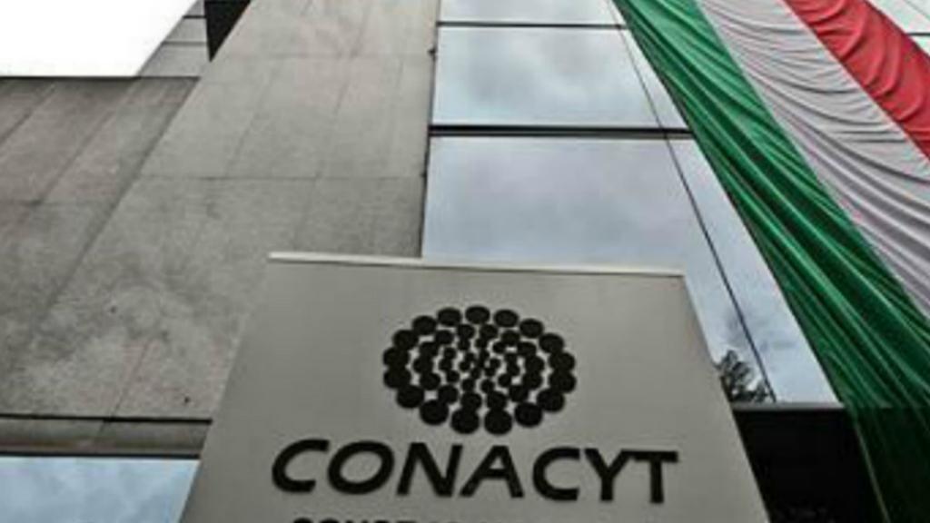 Conacyt difunde experiencia curricular de nuevo subdirector - Maria Elena Álvarez-Buylla explicó en que consiste la suspensión que pidió