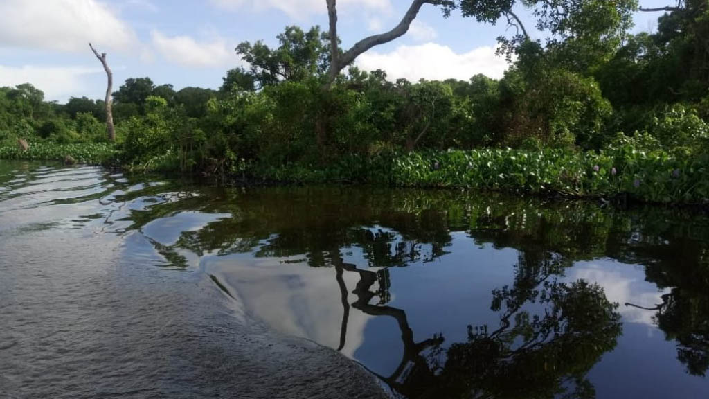 Derrama de combustible de Pemex alcanza el río Coatzacoalcos - Combustible