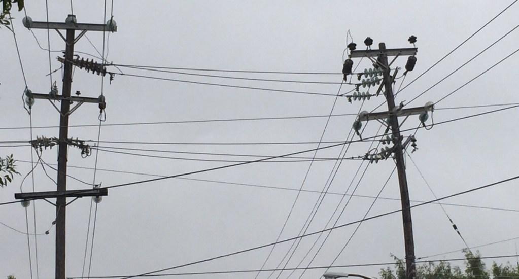 Empresas de telecomunicaciones podrán utilizar postes de CFE - Foto de internet