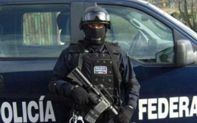 Organizaciones civiles buscarán hablar de seguridad con próximo gobierno - organizaciones civiles buscaran trabajar con el próximo gobierno en temas de seguridad
