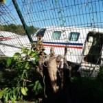 Se impacta aeronave contra malla perimetral en aeropuerto de Michoacán - Foto de Quadratín