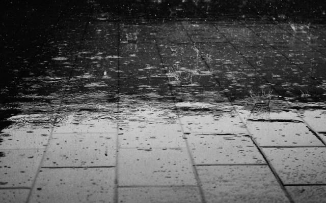 Esperan chubascos y granizo en algunos estados del país - Caída de lluvia. Foto de Internet