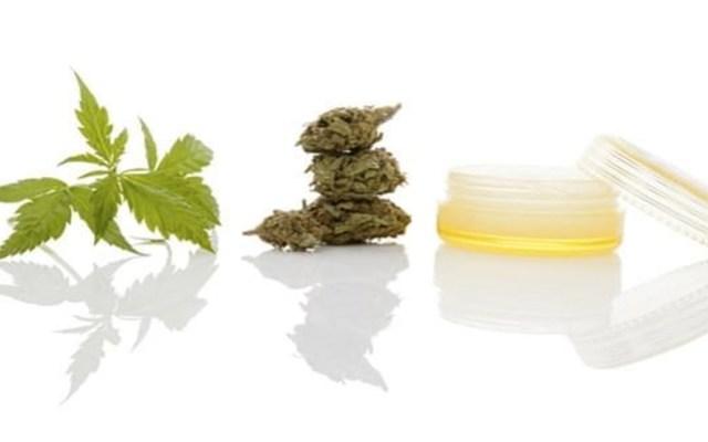 Cofepris libera 19 nuevos productos de cannabis - Foto de internet