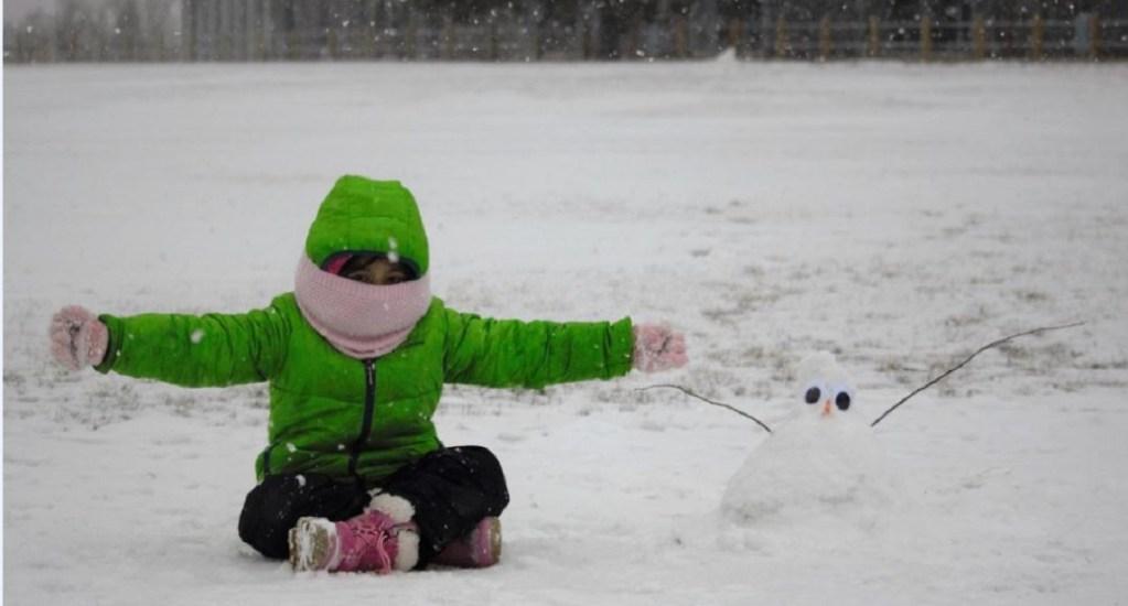 Toronto se recupera poco a poco de la mayor nevada de su historia - Nieve en Toronto. Foto de @cityoftoronto