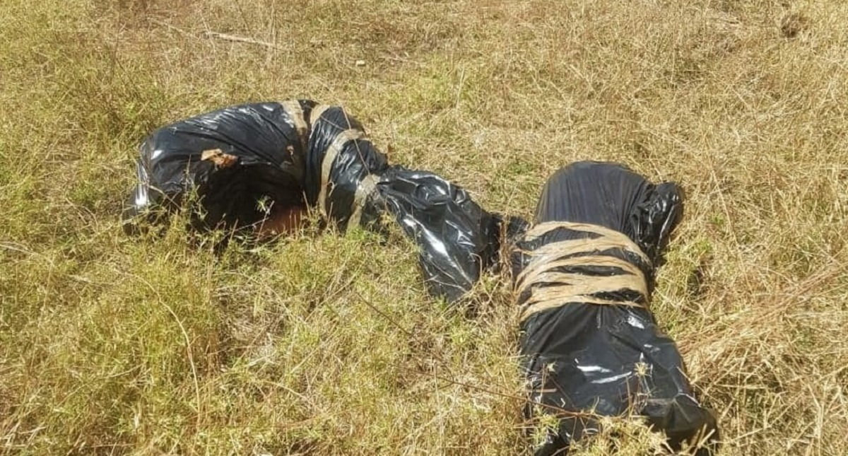 Cadáveres de padres. Foto de Diario de Morelos
