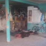 Enfrentamiento deja siete muertos en Salamanca