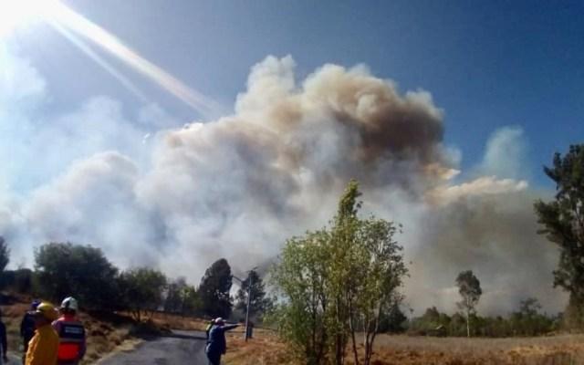 Quema de pastizales pudo detonar incendio en Xochimilco - Incendio en Parque Ecológico de Xochimilco. Foto de Sedema