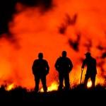 Incendio en Xochimilco afectó 40 hectáreas - Foto de Notimex
