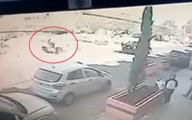 #Video Adolescentes intentan secuestrar a estudiante en Ecatepec - Intento de rapto de estudiante. Captura de pantalla
