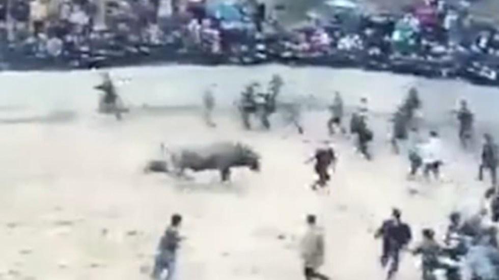 "#Video Toro ""ebrio"" mata a su dueño en festival en China - toro borracho mata a su dueño"