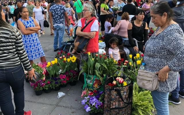 Obsequian flores que adornaron el Zócalo - Obsequian flores que adornaron el Zócalo