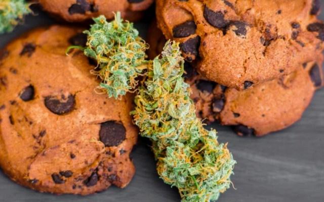 Aumentan emergencias médicas por consumir alimentos con marihuana - Foto de Humboldt Seed Organization