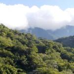 Áreas naturales de Chiapas y BCS tendrán nuevas medidas de protección - Área Natural Protegida. Foto de Conanp