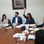 Congreso de SLP rechaza iniciativa para legalizar matrimonio igualitario - matrimonios igualitarios