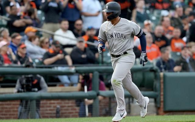 Gleyber Torres hace historia y los Yankees recuperan el ritmo - Gleyber Torres. Foto de Rob Carr/GETTY IMAGES NORTH AMERICA/AFP
