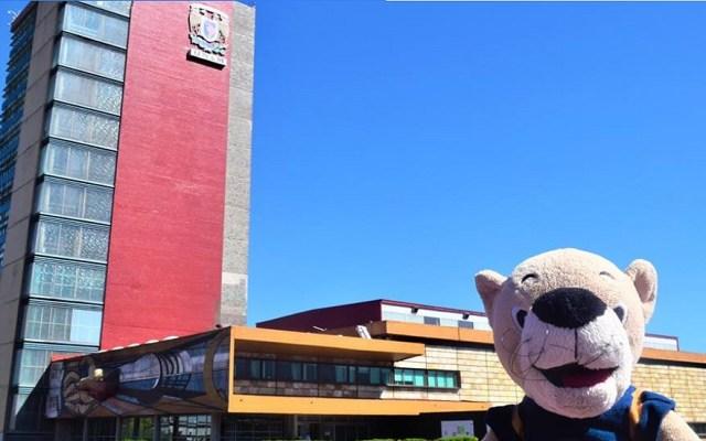 UNAM emite convocatoria de ingreso a licenciatura - 'Goyo' en la Torre de Rectoría de CU. Foto de @UNAM.MX.Oficial