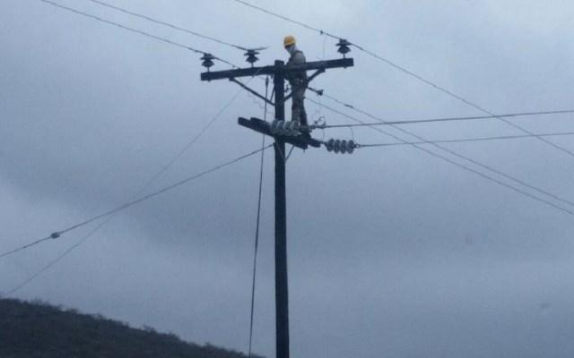 Empresarios urgen medidas de seguridad para sector energético - Empresarios Mantenimiento a redes eléctricas. Foto de @CFENacional